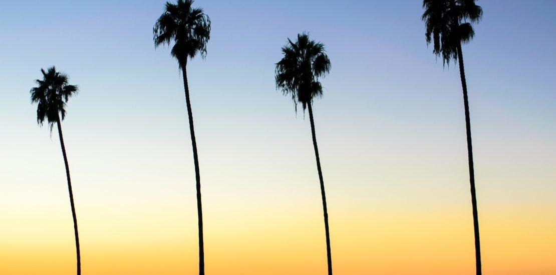 venture rich online marketing experts in orlando, florida